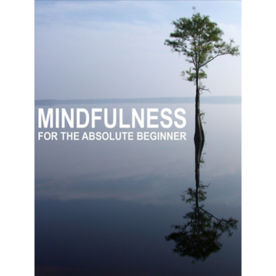 Mindfulness for the Absolute Beginner by Sue Fuller